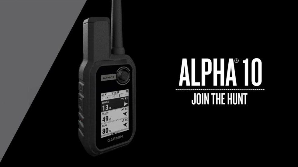Alpha-10