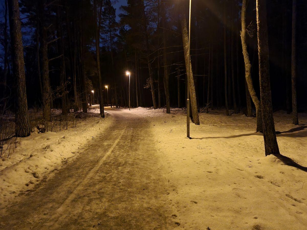 Pagrindine_naktis